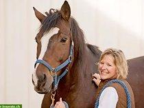 Pferdepflegerin gesucht, Teilzeit für 3 bis 4 Vormittage/Woche