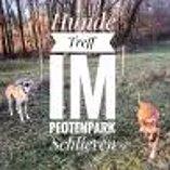 Suchen Hundebetreuer/in Freelance/Selbständig oder Teilzeitanstellung