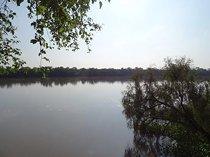 Vacant land / plot in stilfontein for sale