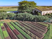 74.8 hectare lifestyle property for sale in jeffreys bay