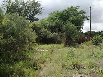 Great investment property this 2677m2 stand is sit