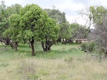 982.1 ha land available in groot marico