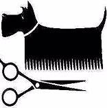Home Pet Grooming