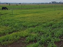 Vacant land / plot in vyfhoek ah for sale