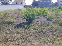 1,026m Vacant Land For Sale in Sandbaai