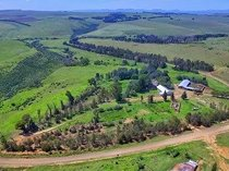 Farm in harrismith for sale