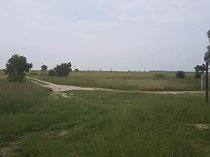Farms for sale - rietvlei delareyville north west