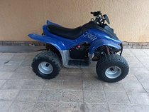 Dinli 100,2Stroke(Automatic with reverse)