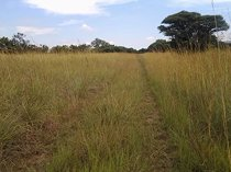 12 ha land available in derby